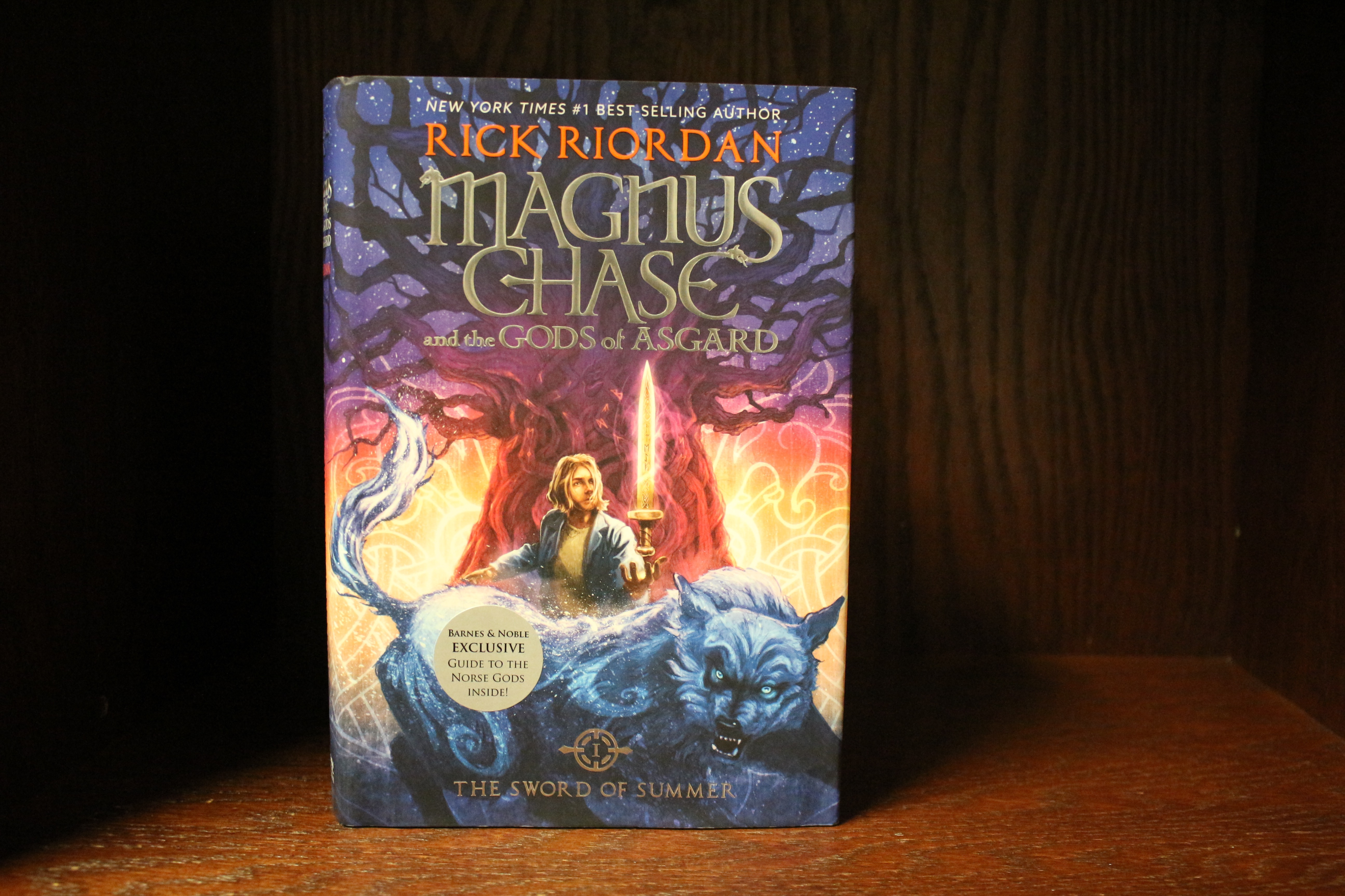 Front facing photo of Magnus Chase and the God of Asgard book